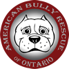 Website Design Ontario, Website Development, Website Hosting, WordPress for American Bully Rescue of Ontario